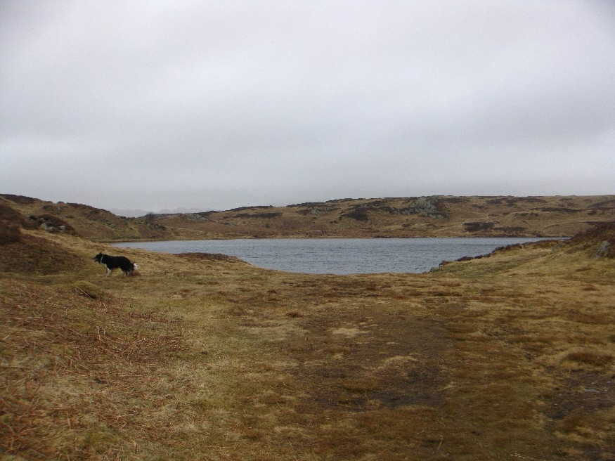 Beacon Tarn