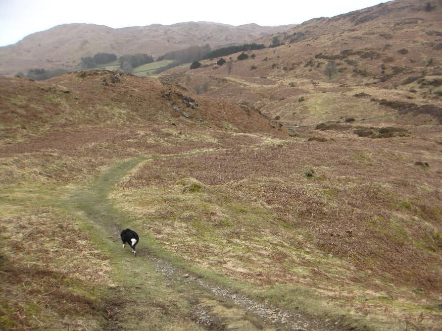 Lots of undulating terrain.