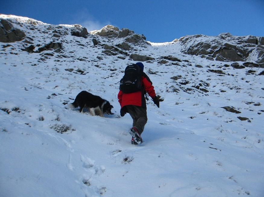 Powder snow conceals path